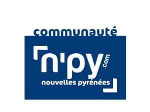 logo-npy
